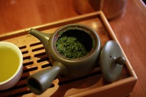 Camellia Sinensis ceai