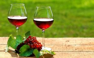 polifenoli vin